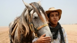 Junge Anouar mit Pferd