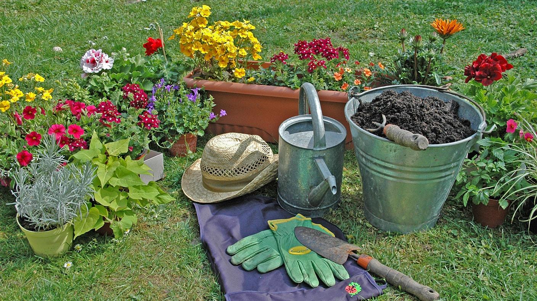 balkonk sten tipps f r eine gelungene bepflanzung startseite marktcheck. Black Bedroom Furniture Sets. Home Design Ideas