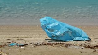 Eine blaue Plastiktüte liegt neben weiterem Unrat am Strand.