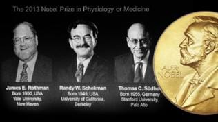 US James Rothman and US Randy Schekman plus German-born researcher Thomas Suedhof have been named as winners of the 2013 Nobel Prize in medicine the Karolinska Institute announced in Stockholm