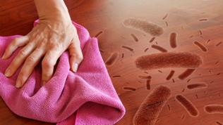 Frau wischt einen Tisch ab, darauf befinden sich Bakterien/Keime