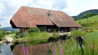 Restaurierter Bauernhof bei Hausach