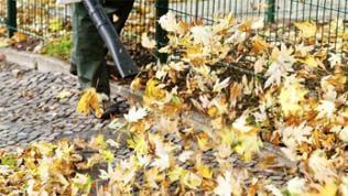 Ein Mann pustet mit einem Laubbläser die Blätter vom Gehweg