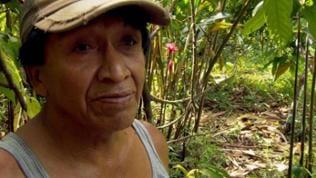 Mann vor Kakao Pflanze