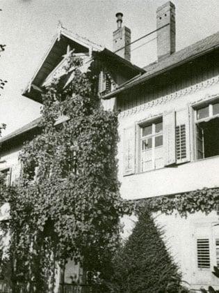 Altes Haus, von Kletterpflanzen umrankt