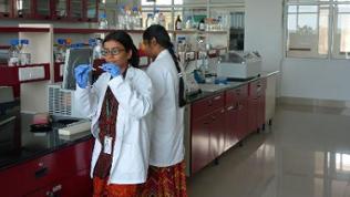 Das Gentechnik-Labor des ICRISAT