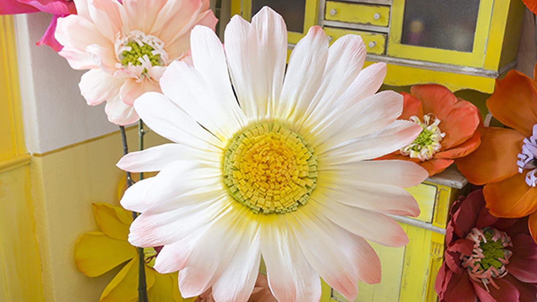 Blumen aus krepppapier extra gros for Krepppapier blumen