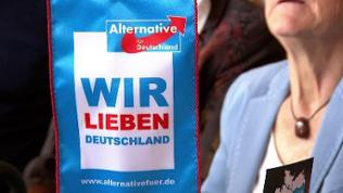 AfD-Parteitag