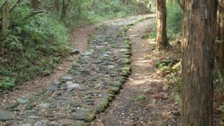 """Teile des historischen Tokaido, der sogenannten """"Ostmeerstrasse"""", kann man sich in Hakone noch erwandern."""