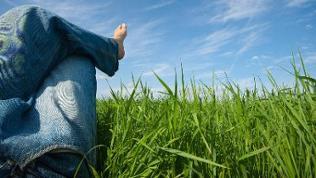 Eine Frau mit Jeans entspannt auf einer grünen Wiese und blickt in den blauen Himmel.