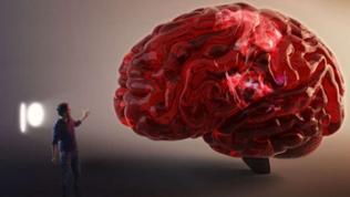 Person steht neben übergroßem Modell eines Gehirns.