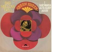 Plattencover von Ireen Sheer