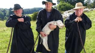 Über 800 Lämmer bringen die Mutterschafe von Schäfer Stefan Fauser im Jahr zur Welt