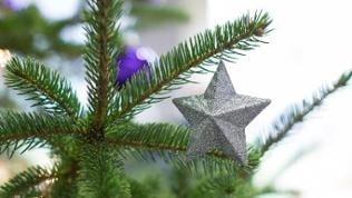 Ein Stern hängt am 03.12.2015 an einem Weihnachtsbaum in Bielefeld (Nordrhein-Westfalen)