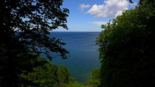 Buchenurwald Jasmund - Ausblick auf Ostsee