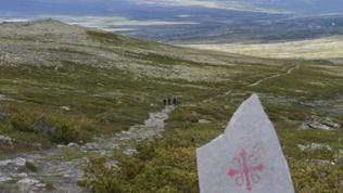 Der Olavsweg auf dem Dovrefjell.