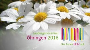 Ein Blumenfeld und das Logo der Landesgartenschau 2016 in Öhringen.