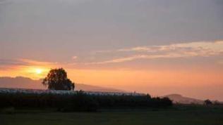 Sonnenaufgang über Tettnang