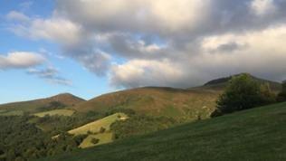 Landschaft - Hügel mit Wald und Wiesen