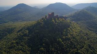 Eine Burg auf einem Hügel umringt von Wald