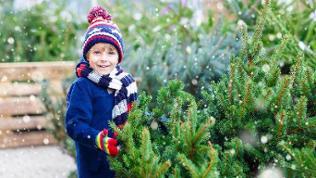 Ein Junge steht an einem Weihnachtsbaum-Verkauf.