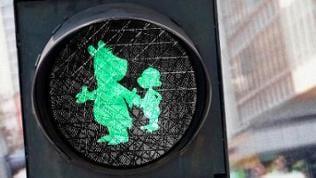 Bildmontage: Eine grüne Ampel mit Äffle und Pferdle drauf.