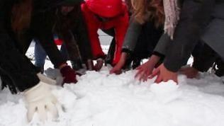 Viele Hände greifen in den Schnee