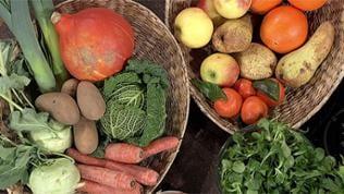 Korb mit Obst und Gemüse