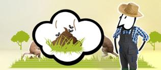 Comic: Landwirt ärgert sich über Hundehaufen