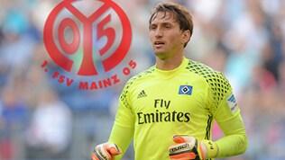 René Adler hütet künftig das Tor des FSV Mainz 05