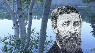 Thoreau- Quiz