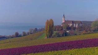 Die barocke Wallfahrtskirche Birnau ist ein Touristenmagnet am Bodensee