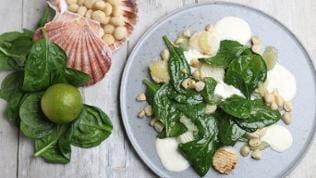 Gebratene Jakobsmuschel mit Maccadamianuss, Spinatsalat und Limettenvinaigrette
