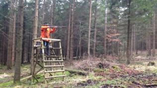 Jäger im Wald auf Hochsitz