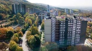 der Heidelberger Emmertsgrund
