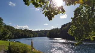 Flussufer in der Sonne