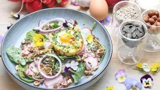 Spinat-Salat mit Radieschen und Schnittlauch-Haselnuss-Krokant