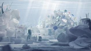 """""""Plastic Seas Stills"""", Filmfestival NaturVision, Ludwigsburg, Juli 2018"""