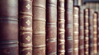 Buchrücken ledergebundener Bücher