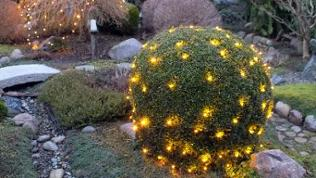 Garten mit Beleuchtung