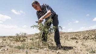 Tony Rinaudo, Berater für natürliche Ressourcen,  Ernährungssicherheit und Klimawandel für World Vision Australia, ist Träger des Alternativen Nobelpreises 2018.
