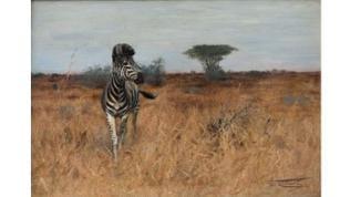 Wilhelm Kuhnert, Zebra