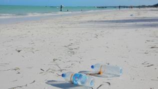 Plastikflaschen verschmutzen den Strand von Sansibar