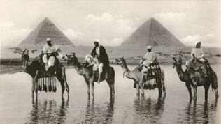 Camels and riders near the Pyramids, Egypt