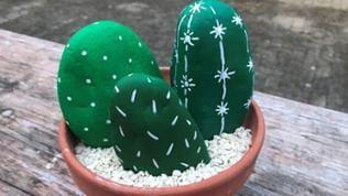 Die fertigen Kakteen kann man auch einzeln in kleine Töpfchen setzen oder zu mehreren in ein größeres Gefäß. Die Gefäße mit grobem Sand befüllen.
