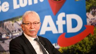Michael Frisch, AfD
