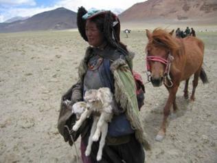 Eine Nomadin trägt ein Ziegenkind auf dem Arm und zieht ein Pferd hinter sich her
