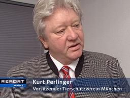 Kurt Perlinger