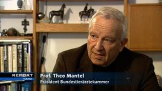 Prof. Theo Mantel