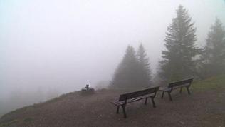 Nebel auf Feldberg
